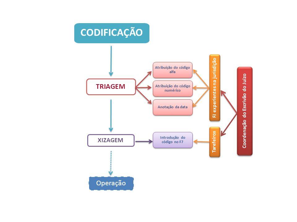 Atribuição do código alfa Tarefeiros Coordenação do Escrivão do Juízo CODIFICAÇÃO Atribuição do código numérico Anotação da data Introdução do código no F7 OPERAÇÃO Operação