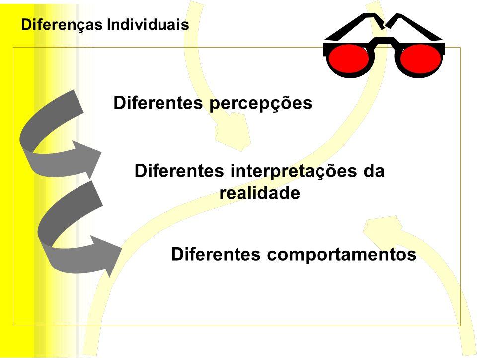 Diferentes interpretações da realidade Diferentes percepções Diferentes comportamentos Diferenças Individuais