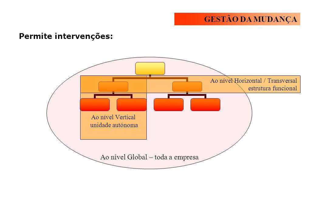 Permite intervenções: Ao nível Global – toda a empresa Ao nível Vertical unidade autónoma Ao nível Horizontal / Transversal estrutura funcional GESTÃO DA MUDANÇA