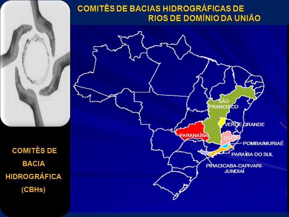 COMITÊS DE BACIA HIDROGRÁFICA (CBHs) COMITÊS DE BACIAS HIDROGRÁFICAS DE RIOS DE DOMÍNIO DA UNIÃO
