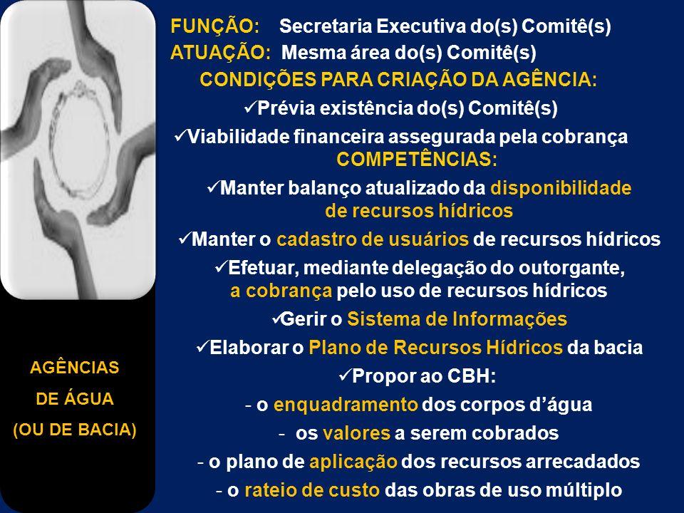 AGÊNCIAS DE ÁGUA (OU DE BACIA) FUNÇÃO: Secretaria Executiva do(s) Comitê(s) ATUAÇÃO: Mesma área do(s) Comitê(s) CONDIÇÕES PARA CRIAÇÃO DA AGÊNCIA: Prévia existência do(s) Comitê(s) Viabilidade financeira assegurada pela cobrança COMPETÊNCIAS: Manter balanço atualizado da disponibilidade de recursos hídricos Manter o cadastro de usuários de recursos hídricos Efetuar, mediante delegação do outorgante, a cobrança pelo uso de recursos hídricos Gerir o Sistema de Informações Elaborar o Plano de Recursos Hídricos da bacia Propor ao CBH: - o enquadramento dos corpos dágua - os valores a serem cobrados - o plano de aplicação dos recursos arrecadados - o rateio de custo das obras de uso múltiplo