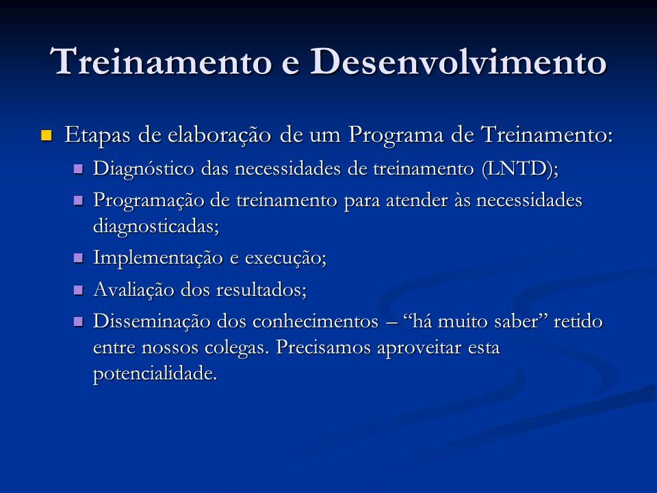 Treinamento e Desenvolvimento Etapas de elaboração de um Programa de Treinamento: Etapas de elaboração de um Programa de Treinamento: Diagnóstico das