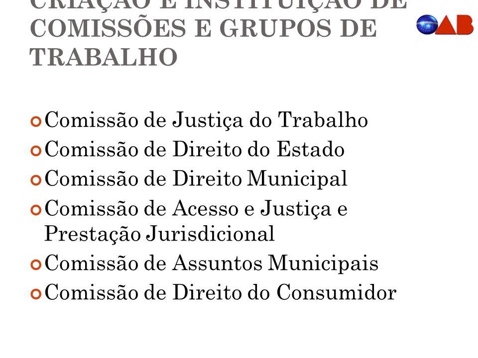 CRIAÇÃO E INSTITUIÇÃO DE COMISSÕES E GRUPOS DE TRABALHO Comissão de Justiça do Trabalho Comissão de Direito do Estado Comissão de Direito Municipal Comissão de Acesso e Justiça e Prestação Jurisdicional Comissão de Assuntos Municipais Comissão de Direito do Consumidor