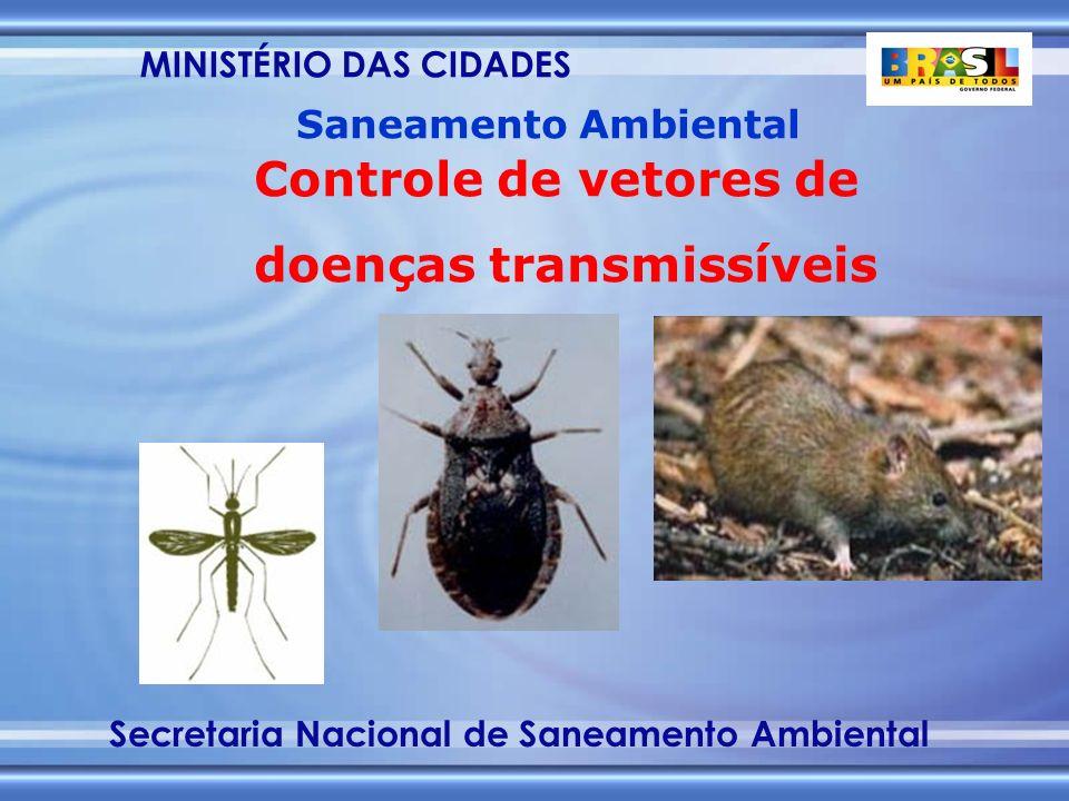 MINISTÉRIO DAS CIDADES Secretaria Nacional de Saneamento Ambiental Saneamento Ambiental Controle de vetores de doenças transmissíveis