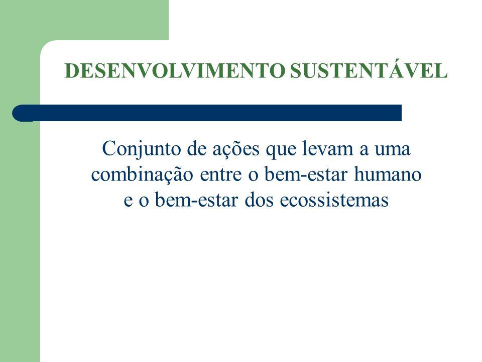 DESENVOLVIMENTO SUSTENTÁVEL Conjunto de ações que levam a uma combinação entre o bem-estar humano e o bem-estar dos ecossistemas