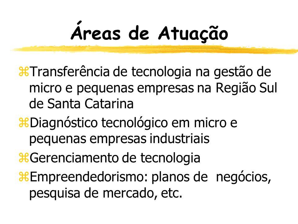 Áreas de Atuação zIndicadores de desempenho no processo produtivo zInovação e Competitividade