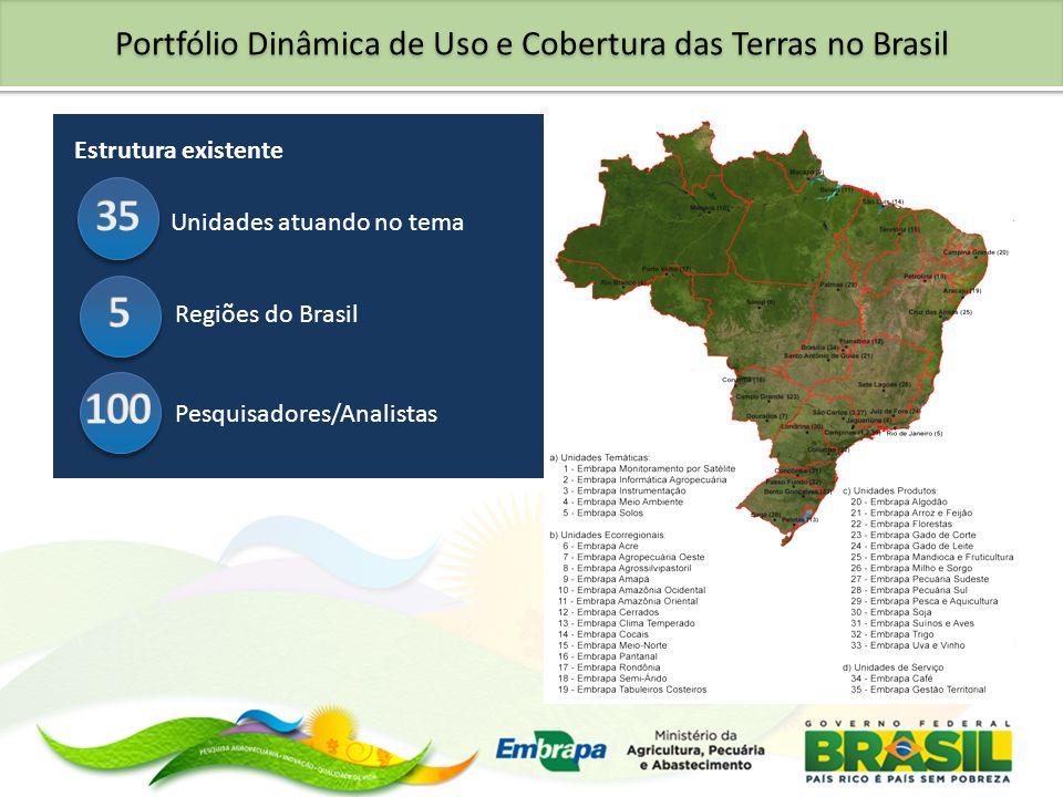 Portfólio Dinâmica de Uso e Cobertura das Terras no Brasil Estrutura existente Unidades atuando no tema Regiões do Brasil Pesquisadores/Analistas