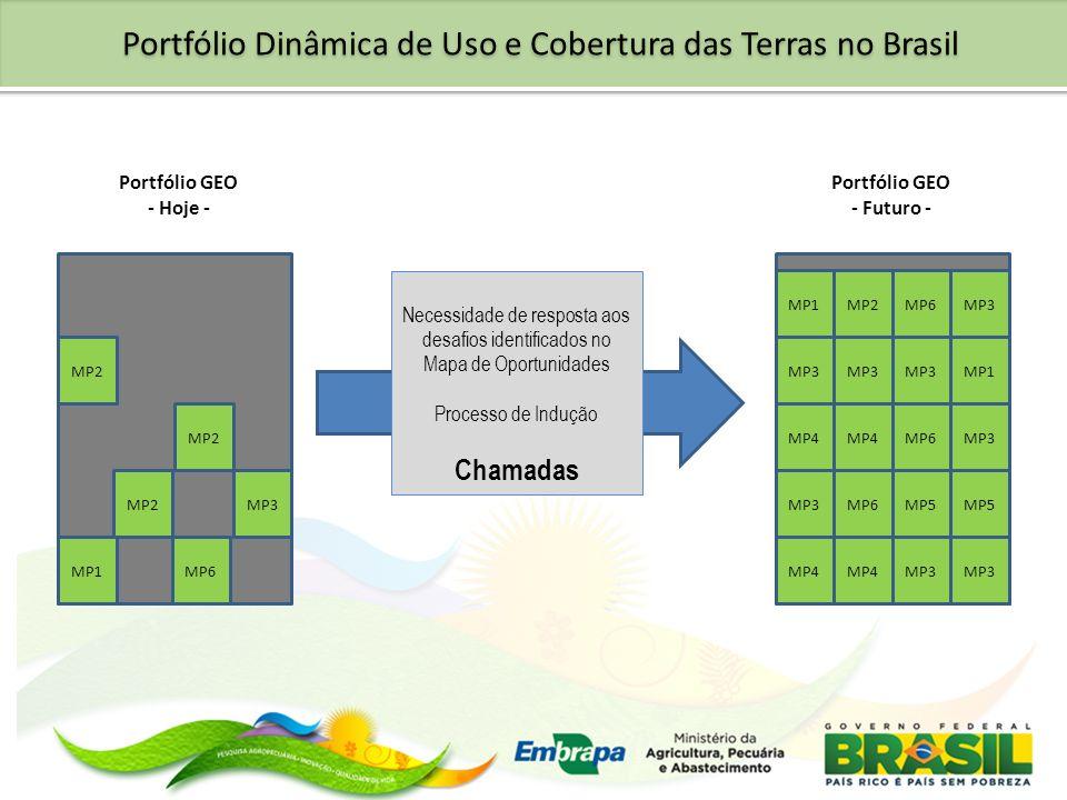 Portfólio GEO - Hoje - Necessidade de resposta aos desafios identificados no Mapa de Oportunidades Processo de Indução Chamadas Portfólio GEO - Futuro