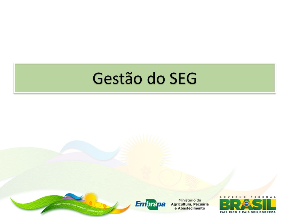 Portfólio Dinâmica de Uso e Cobertura das Terras no Brasil Principais Ações: Observatório Interno da Programação de P&D e TT Evolução MP´s Temas / Áreas Parceiros SISTEMA SEG (2001 a 2012) BUSINESS INTELLIGENCE