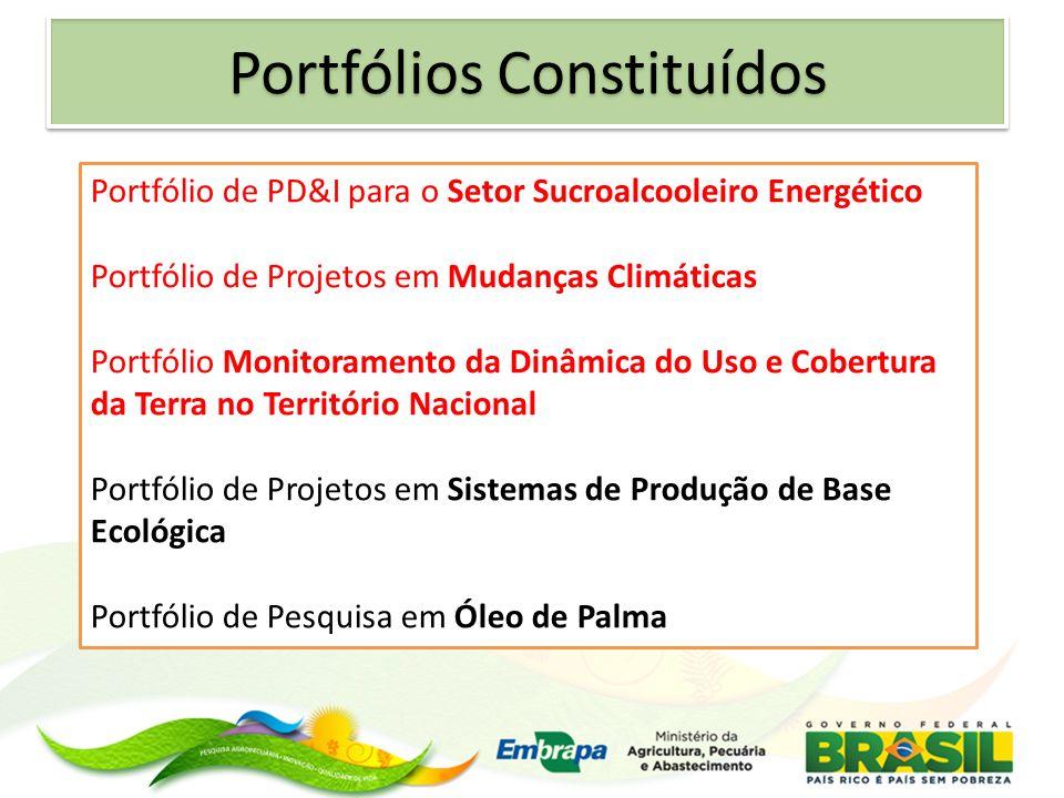 Portfólio de PD&I para o Setor Sucroalcooleiro Energético Portfólio de Projetos em Mudanças Climáticas Portfólio Monitoramento da Dinâmica do Uso e Co