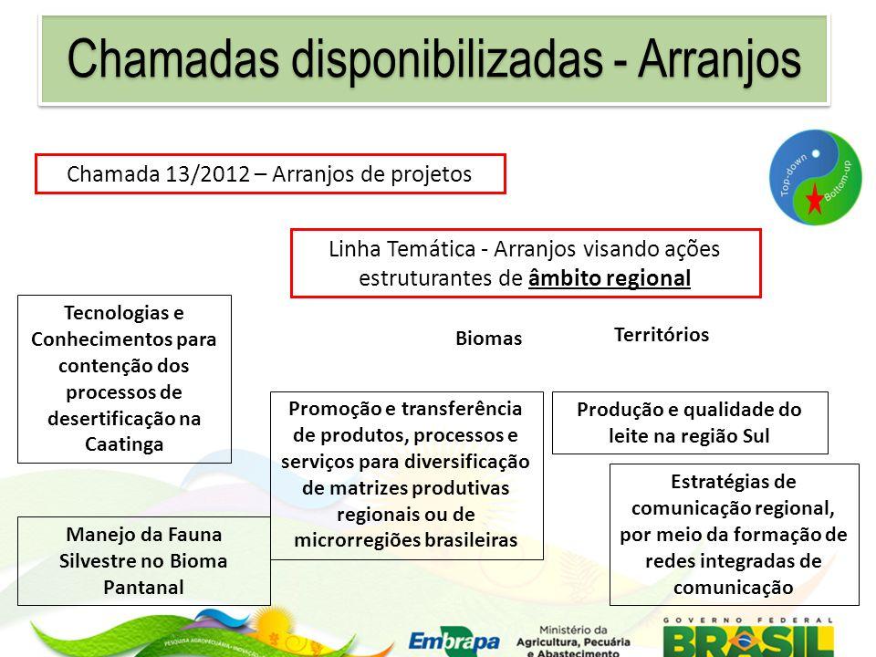 Linha Temática - Arranjos visando ações estruturantes de âmbito regional Chamada 13/2012 – Arranjos de projetos Tecnologias e Conhecimentos para conte
