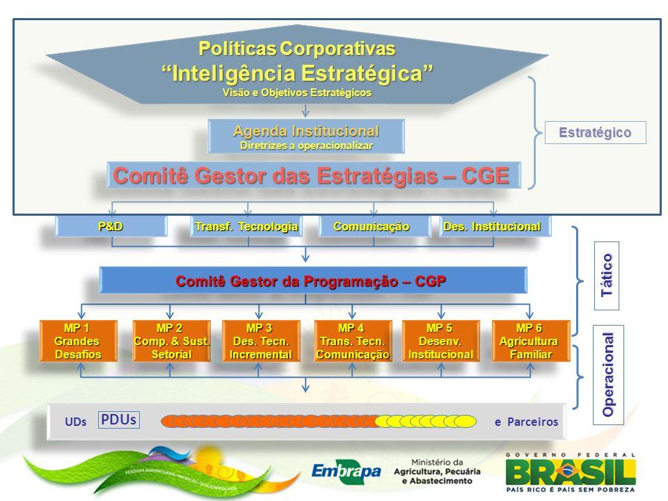 P&D P&D Transf. Tecnologia Des. Institucional ComunicaçãoComunicação MP 1 GrandesDesafios GrandesDesafios MP 2 Comp. & Sust. Setorial MP 2 Comp. & Sus