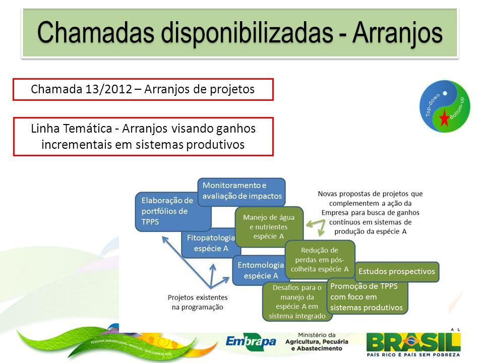 Chamada 13/2012 – Arranjos de projetos Linha Temática - Arranjos visando ganhos incrementais em sistemas produtivos Chamadas disponibilizadas - Arranj