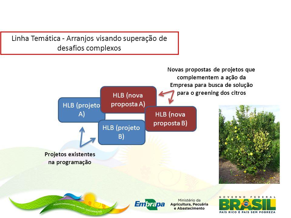 Linha Temática - Arranjos visando superação de desafios complexos HLB (projeto A) HLB (nova proposta A) HLB (projeto B) HLB (nova proposta B) Projetos