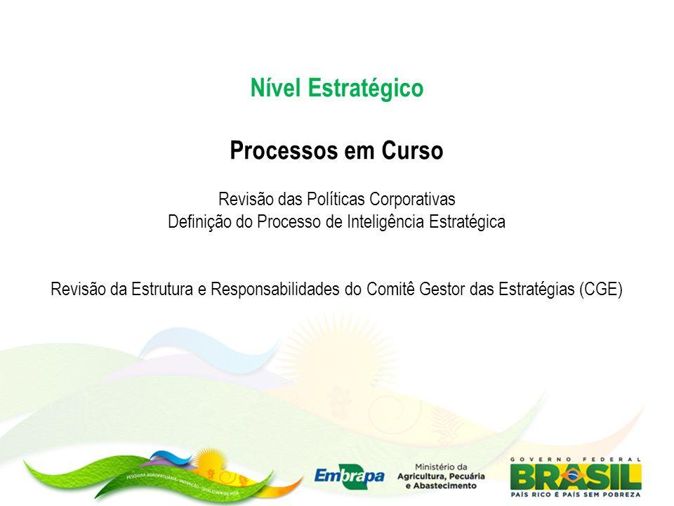 Nível Estratégico Processos em Curso Revisão das Políticas Corporativas Definição do Processo de Inteligência Estratégica Revisão da Estrutura e Respo