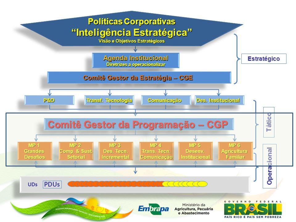 Nível Tático Processos em Curso Revisão da Estrutura e Responsabilidades do Comitê Gestor da Programação (CGP) Revisão dos Processos de Gestão da Programação Gestão temática da programação: portfólios