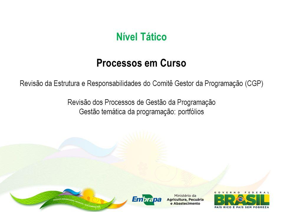 Nível Tático Processos em Curso Revisão da Estrutura e Responsabilidades do Comitê Gestor da Programação (CGP) Revisão dos Processos de Gestão da Prog