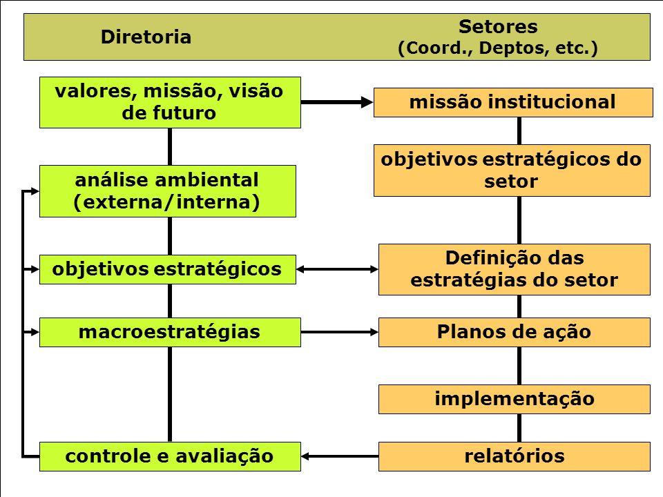 92 Diretoria Setores (Coord., Deptos, etc.) valores, missão, visão de futuro missão institucional análise ambiental (externa/interna) objetivos estrat