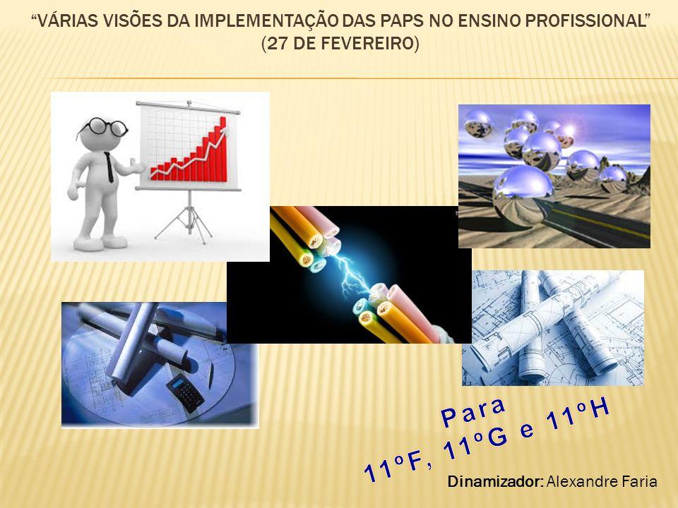 VÁRIAS VISÕES DA IMPLEMENTAÇÃO DAS PAPS NO ENSINO PROFISSIONAL (27 DE FEVEREIRO) Dinamizador: Alexandre Faria