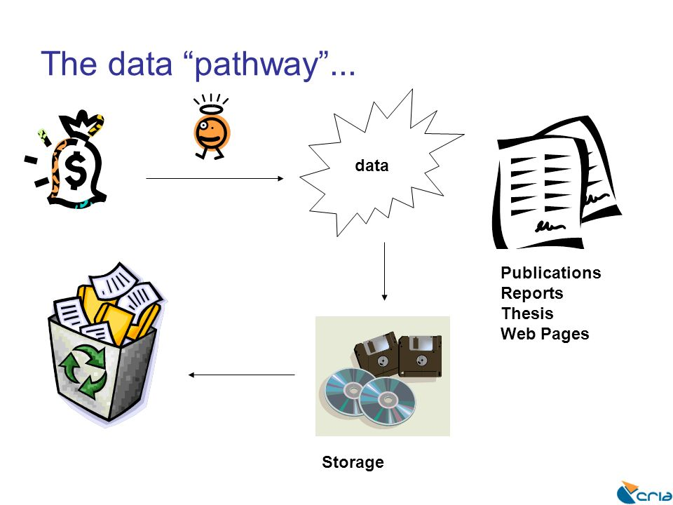 The data pathway... data Publications Reports Thesis Web Pages Storage