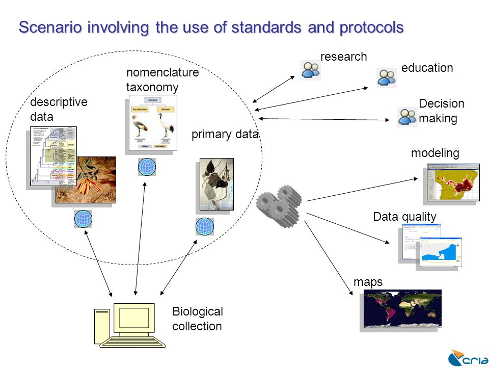 Scenario involving the use of standards and protocols descriptive data nomenclature taxonomy modeling Data quality maps primary data education research Decision making Biological collection
