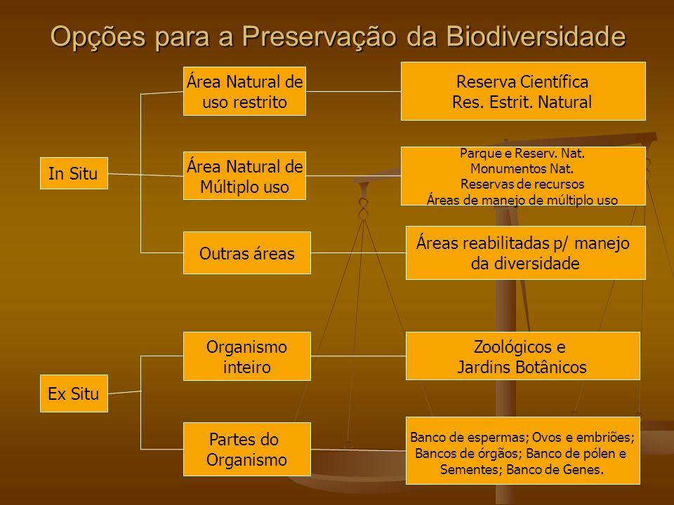 Opções para a Preservação da Biodiversidade In Situ Ex Situ Área Natural de uso restrito Área Natural de Múltiplo uso Outras áreas Organismo inteiro P