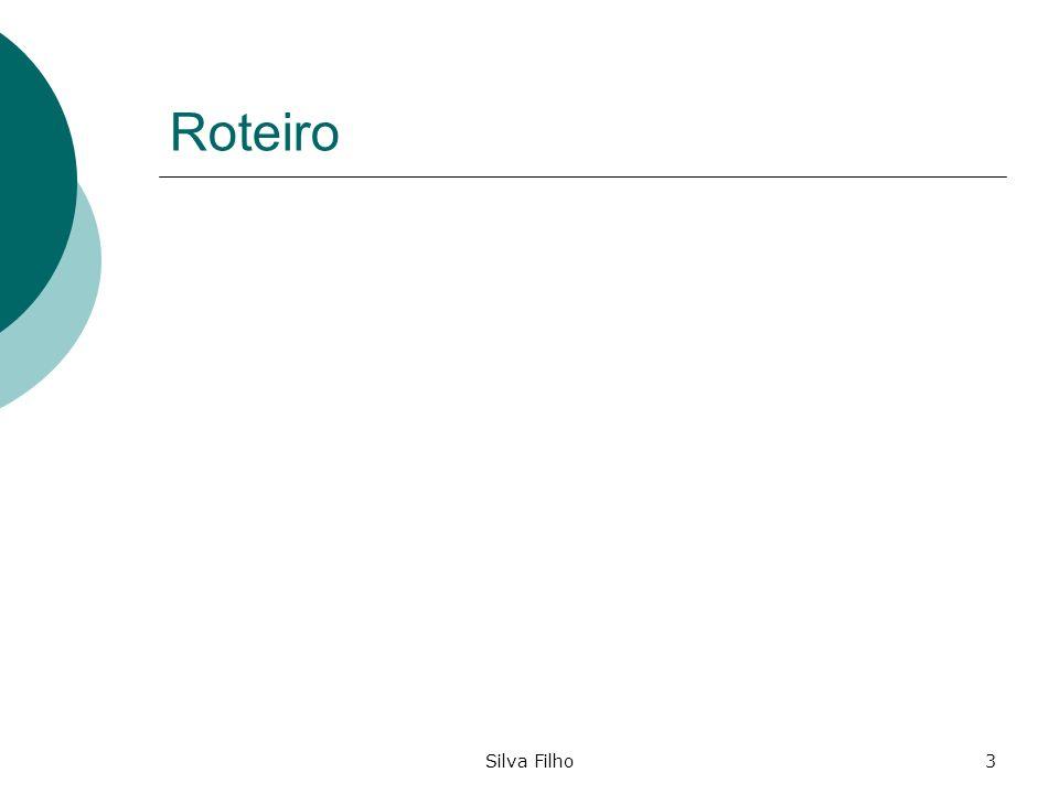 Silva Filho3 Roteiro