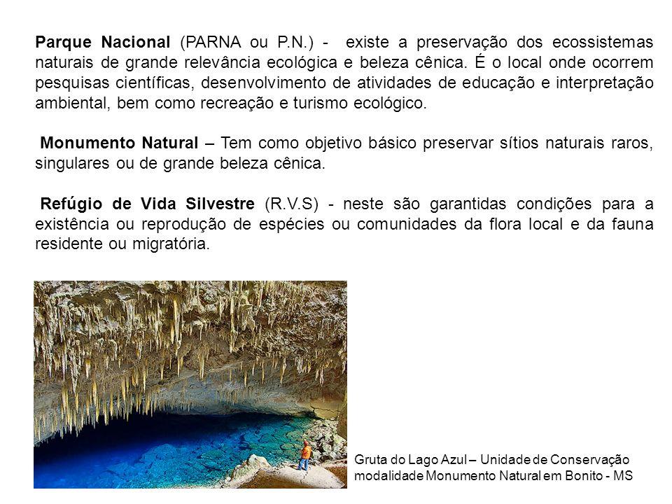 Parque Nacional (PARNA ou P.N.) - existe a preservação dos ecossistemas naturais de grande relevância ecológica e beleza cênica. É o local onde ocorre