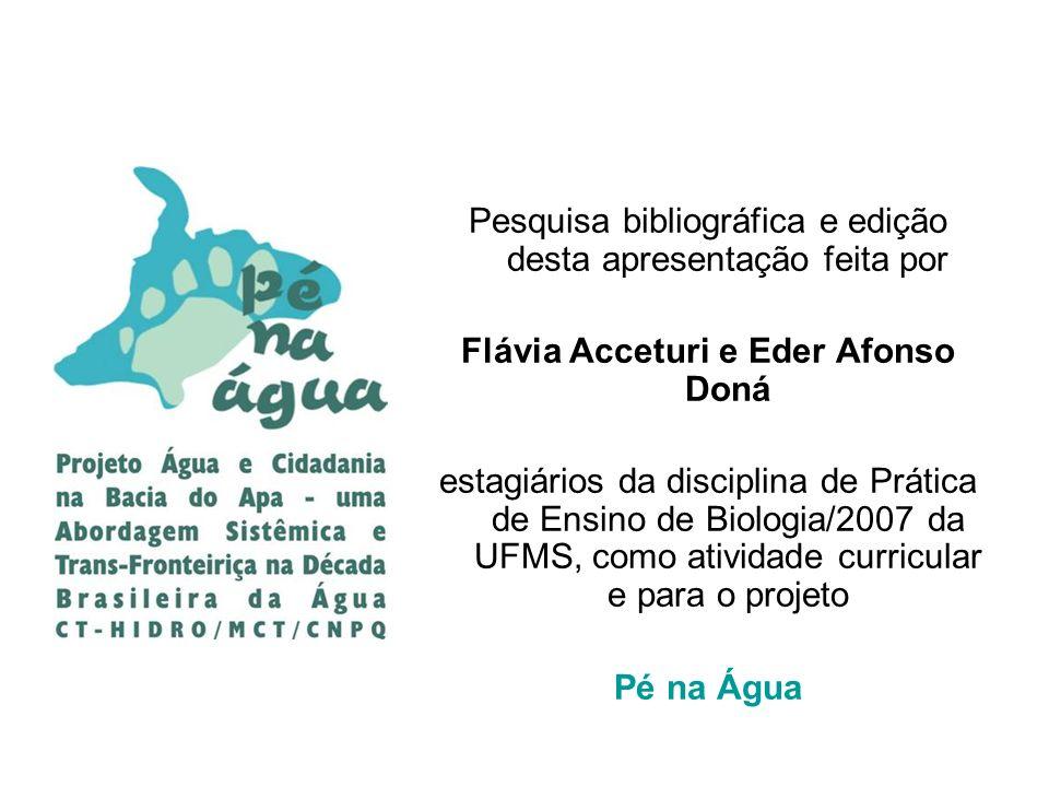 Pesquisa bibliográfica e edição desta apresentação feita por Flávia Acceturi e Eder Afonso Doná estagiários da disciplina de Prática de Ensino de Biol