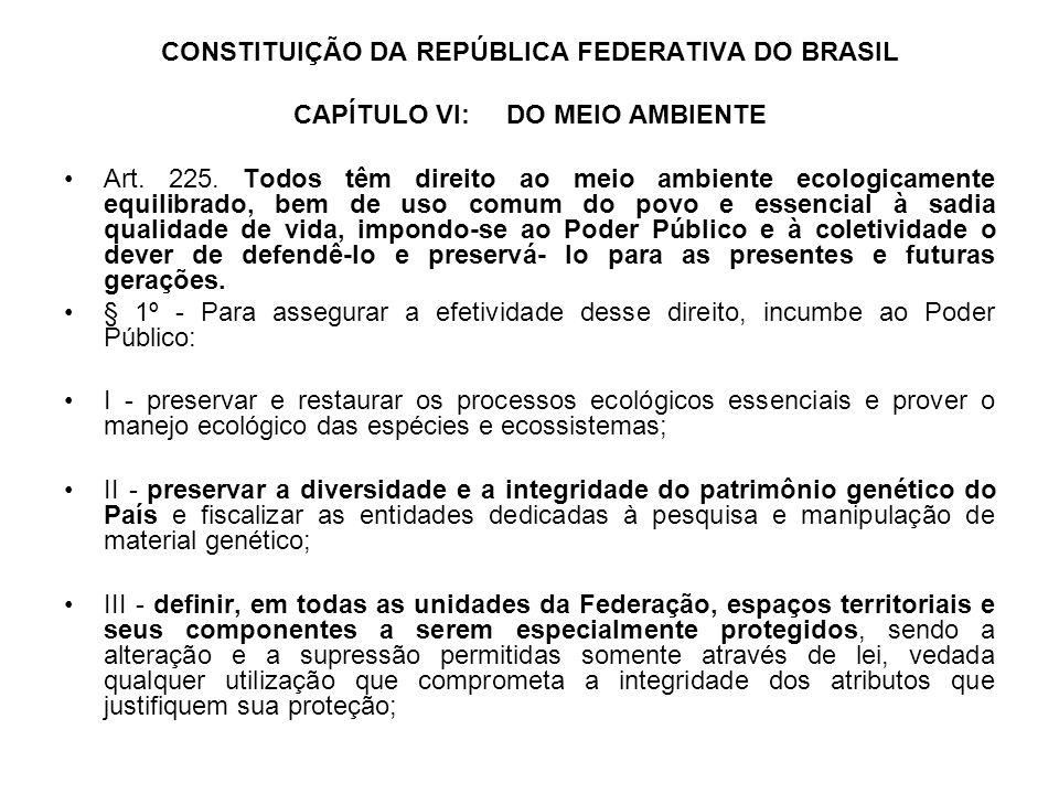 CONSTITUIÇÃO DA REPÚBLICA FEDERATIVA DO BRASIL CAPÍTULO VI: DO MEIO AMBIENTE Art. 225. Todos têm direito ao meio ambiente ecologicamente equilibrado,