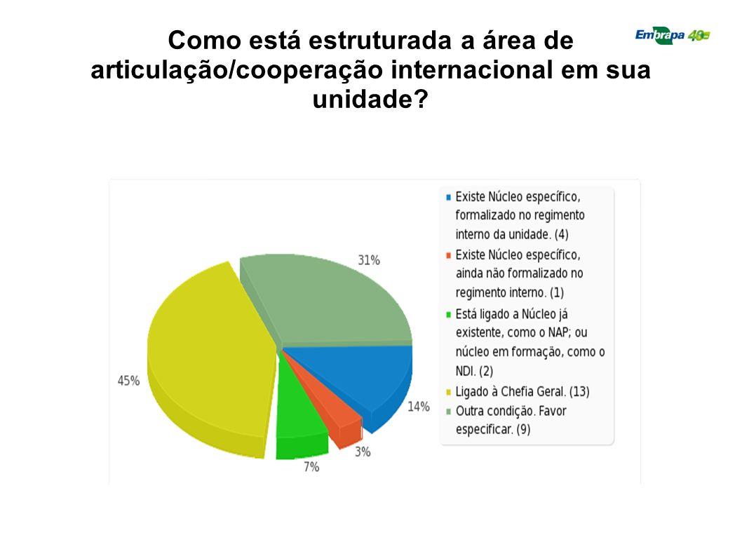 Como está estruturada a área de articulação/cooperação internacional em sua unidade?