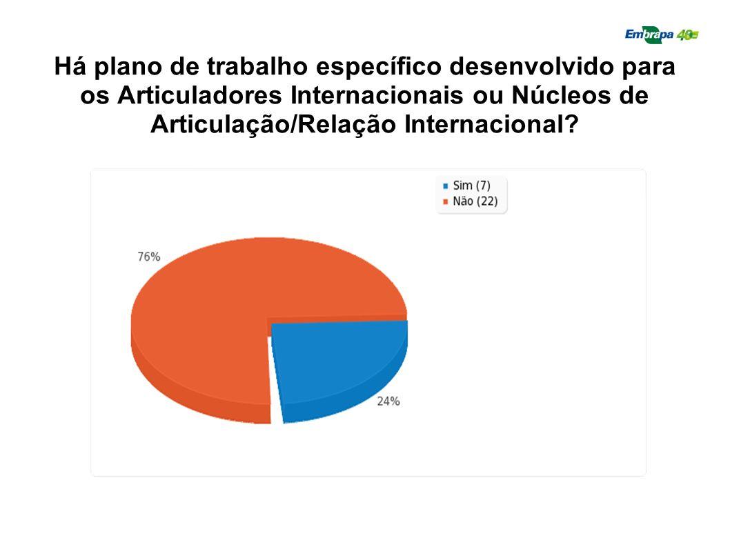 Há plano de trabalho específico desenvolvido para os Articuladores Internacionais ou Núcleos de Articulação/Relação Internacional?