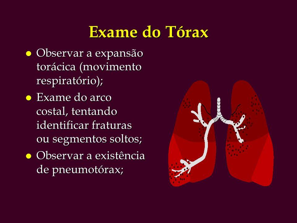 Exame do Tórax l Observar a expansão torácica (movimento respiratório); l Exame do arco costal, tentando identificar fraturas ou segmentos soltos; l Observar a existência de pneumotórax;