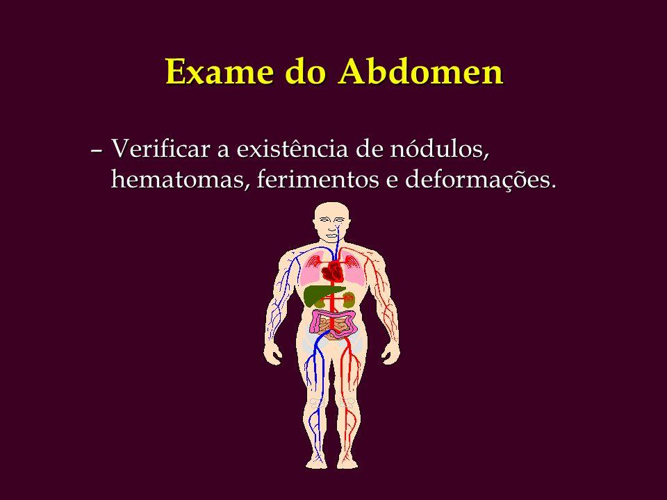 Exame do Abdomen –Verificar a existência de nódulos, hematomas, ferimentos e deformações.