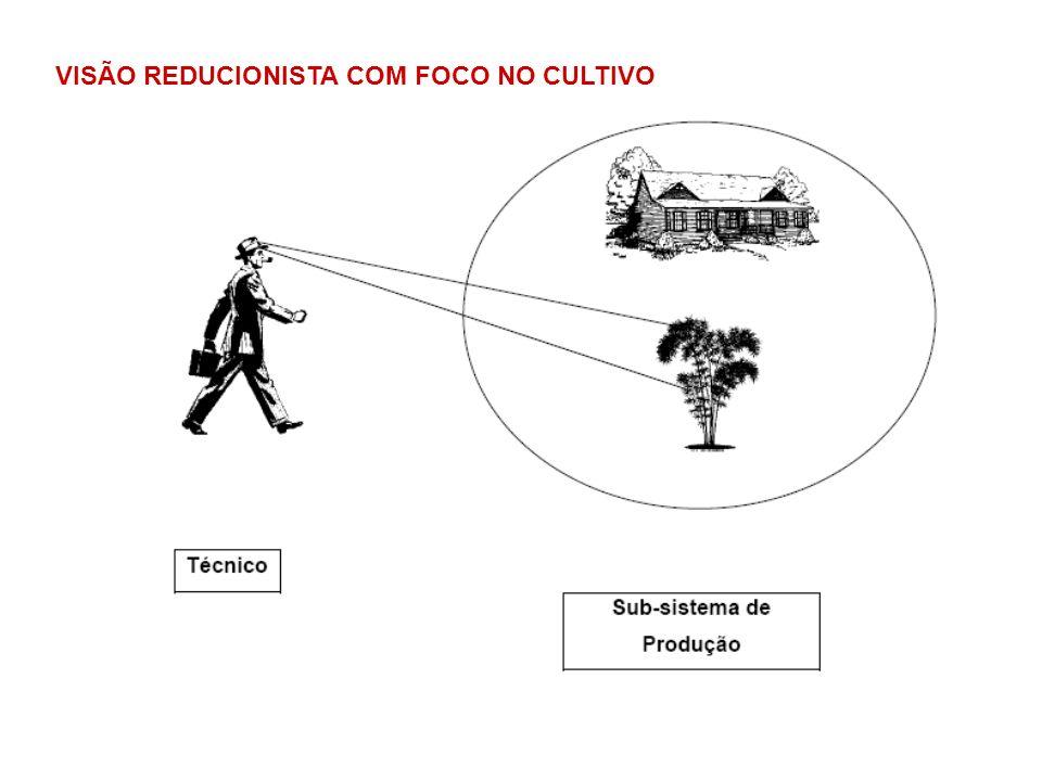 VISÃO REDUCIONISTA COM FOCO NO CULTIVO