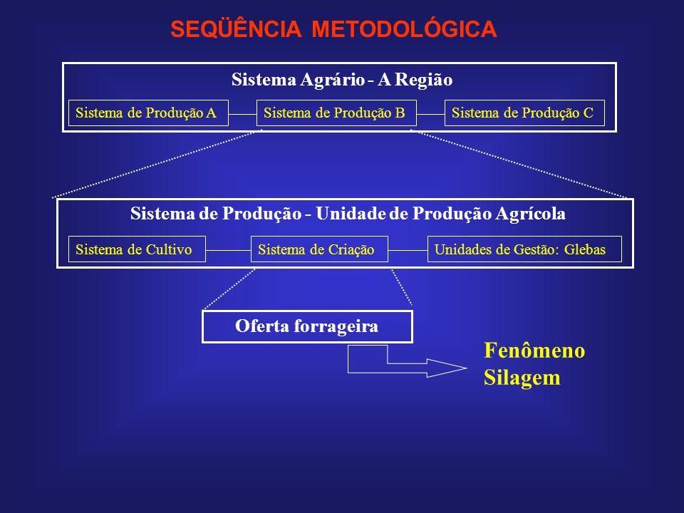 Sistema Agrário - A Região Sistema de Produção ASistema de Produção BSistema de Produção C Sistema de Produção - Unidade de Produção Agrícola Sistema