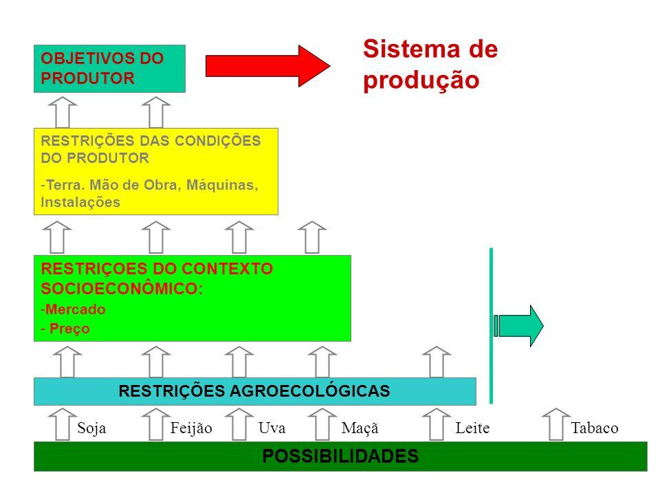 OBJETIVOS DO PRODUTOR Sistema de produção RESTRIÇÕES AGROECOLÓGICAS RESTRIÇÕES DAS CONDIÇÕES DO PRODUTOR -Terra. Mão de Obra, Máquinas, InstalaçõesTer