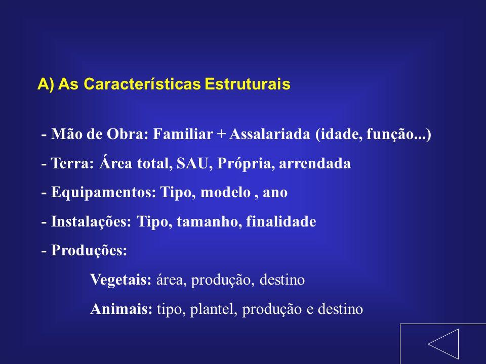 A) As Características Estruturais - Mão de Obra: Familiar + Assalariada (idade, função...) - Terra: Área total, SAU, Própria, arrendada - Equipamentos