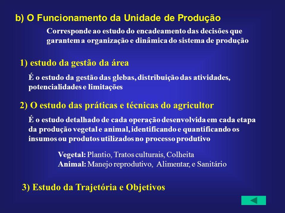 b) O Funcionamento da Unidade de Produção Corresponde ao estudo do encadeamento das decisões que garantem a organização e dinâmica do sistema de produ