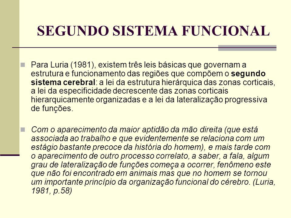 SEGUNDO SISTEMA FUNCIONAL Para Luria (1981), existem três leis básicas que governam a estrutura e funcionamento das regiões que compõem o segundo sist
