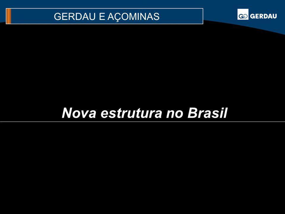 Nova estrutura no Brasil GERDAU E AÇOMINAS