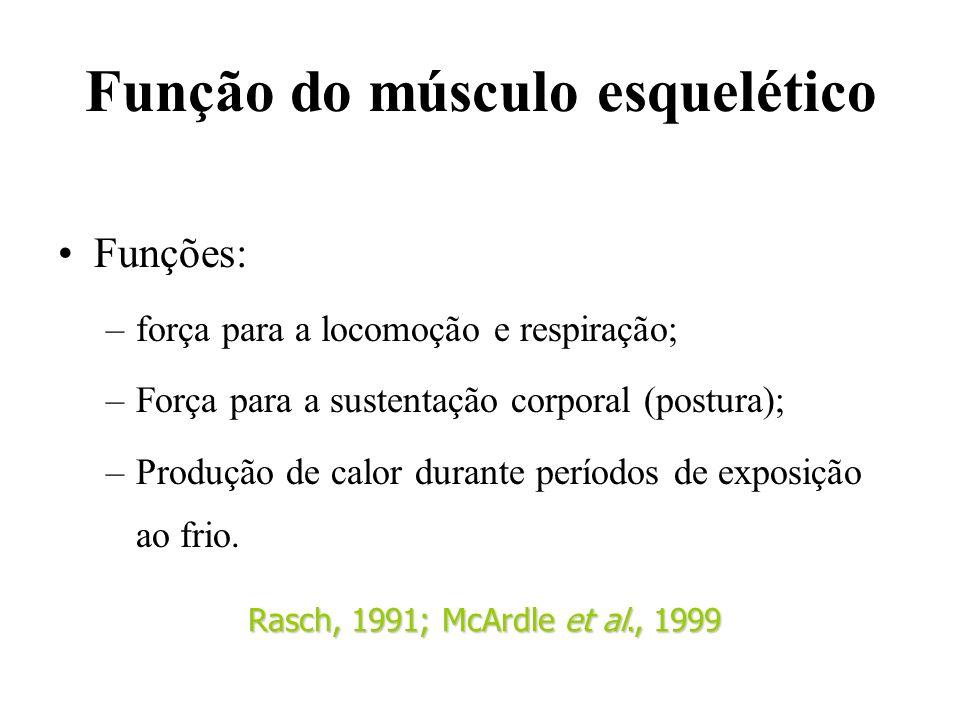 Função do músculo esquelético Funções: –força para a locomoção e respiração; –Força para a sustentação corporal (postura); –Produção de calor durante