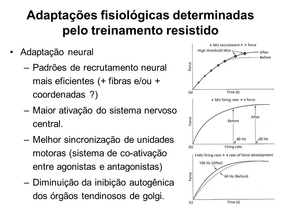 Adaptação neural –Padrões de recrutamento neural mais eficientes (+ fibras e/ou + coordenadas ?) –Maior ativação do sistema nervoso central. –Melhor s