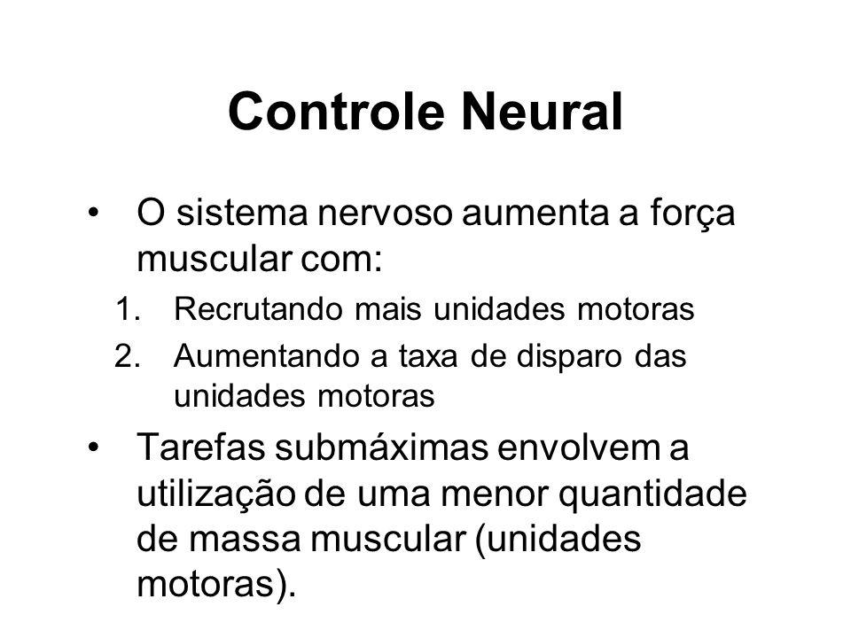 Controle Neural O sistema nervoso aumenta a força muscular com: 1.Recrutando mais unidades motoras 2.Aumentando a taxa de disparo das unidades motoras