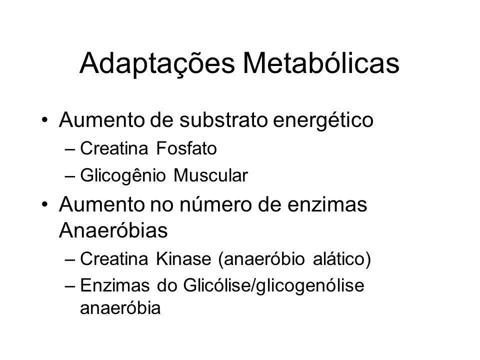 Adaptações Metabólicas Aumento de substrato energético –Creatina Fosfato –Glicogênio Muscular Aumento no número de enzimas Anaeróbias –Creatina Kinase