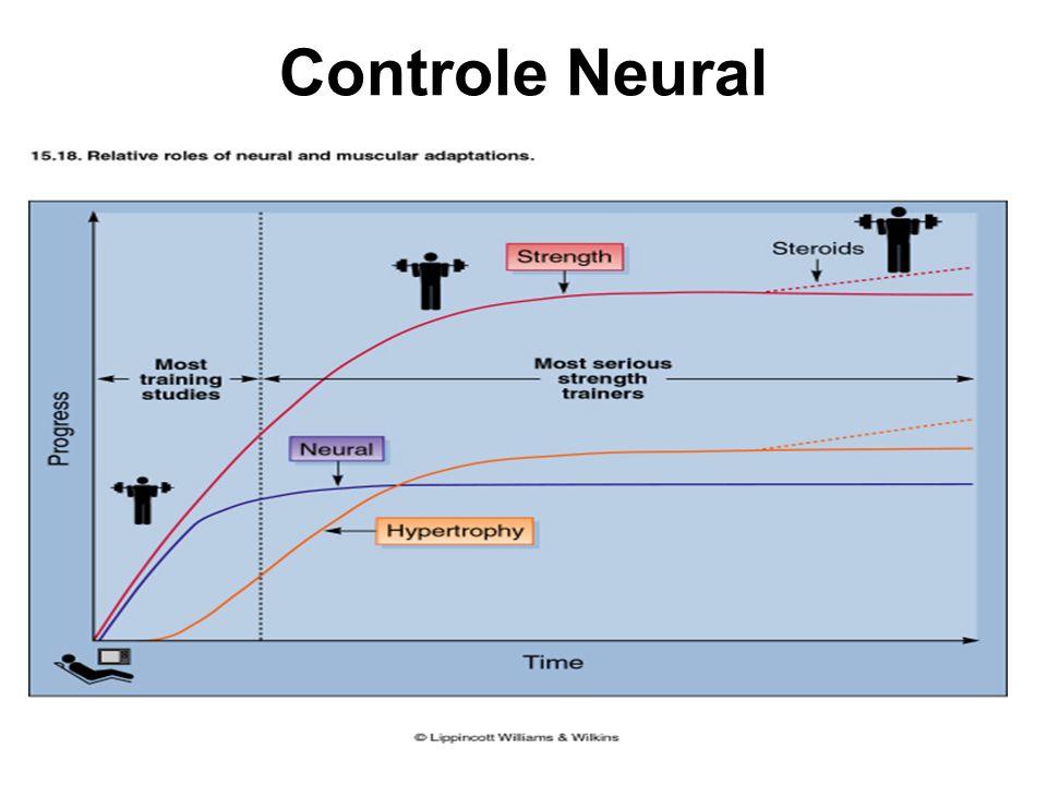 Controle Neural