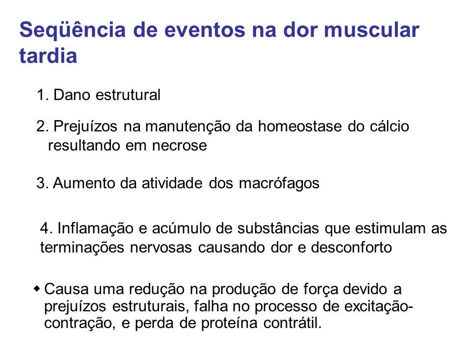1. Dano estrutural 2. Prejuízos na manutenção da homeostase do cálcio resultando em necrose 4. Inflamação e acúmulo de substâncias que estimulam as te