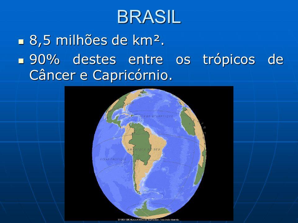 BRASIL 8,5 milhões de km². 8,5 milhões de km². 90% destes entre os trópicos de Câncer e Capricórnio. 90% destes entre os trópicos de Câncer e Capricór