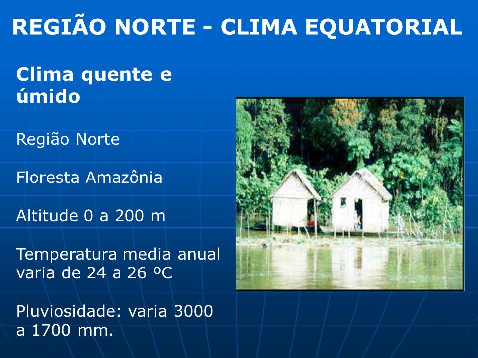 REGIÃO NORTE - CLIMA EQUATORIAL Clima quente e úmido Região Norte Floresta Amazônia Altitude 0 a 200 m Temperatura media anual varia de 24 a 26 ºC Plu