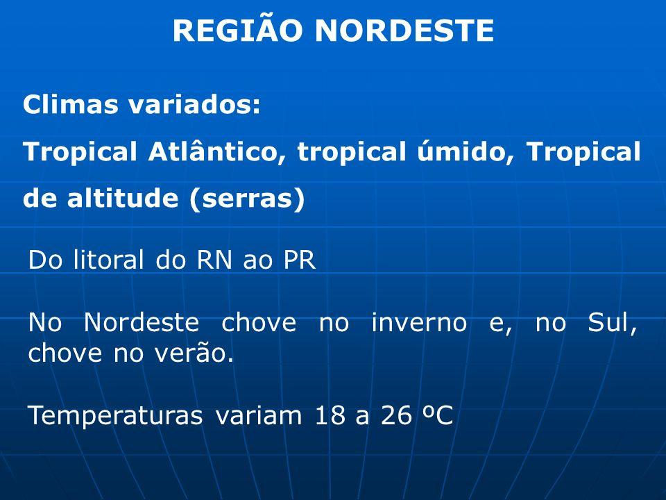REGIÃO NORDESTE Climas variados: Tropical Atlântico, tropical úmido, Tropical de altitude (serras) Do litoral do RN ao PR No Nordeste chove no inverno